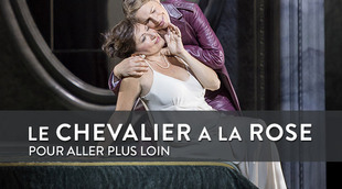 L_focus-chevalier-a-la-rose